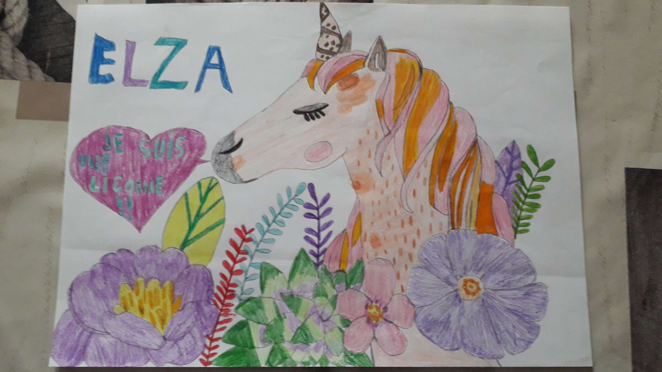 Competition Entry for Elza